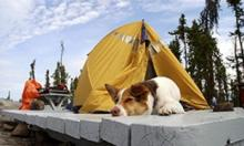 Campground in the NWT