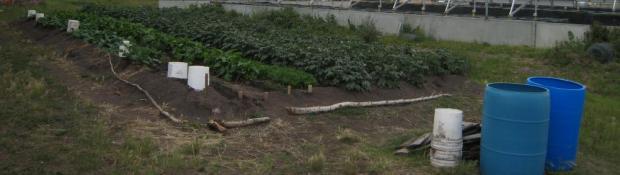 Lutsel' Ke Community Agriculture Project