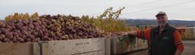 Farmer With Potato Truck
