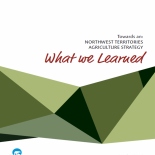 Towards an Agriculture Strategy: What We Learned Report