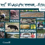Growing Forward 2 - Morel Mushroom Poster